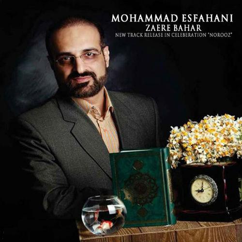 دانلود موزیک جدید محمد اصفهانی به نام زائر بهار