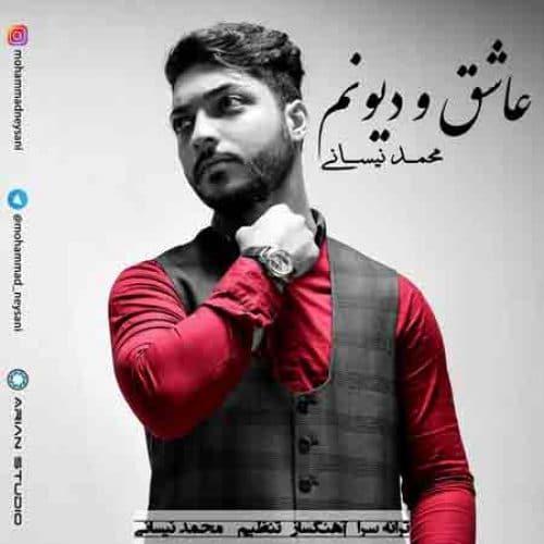 دانلود آهنگ جدید عاشق و دیونم – محمد نیسانی